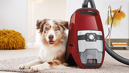 Miele Aims To Meet Your Personal Needs For Room Hygiene As Perfectly As  Possible. Which Is Why Miele Offers A Variety Of Vacuum Cleaners With ...